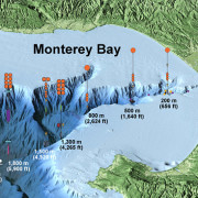 This illustration (not to scale) shows the locations and depths of some of the instruments being placed within Monterey Canyon as part of the Coordinated Canyon Experiment. Image: © 2015 MBARI