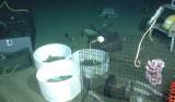 seafloorexperiment