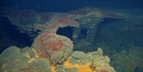 red bacterial mat