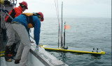 Brian Kieft (left) and Liam Chaffey (right) positioned the Wave Glider hotspot before it was hoisted aboard the R/V Paragon with the help of Thom Maughan and Mark Chaffey (not shown).