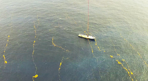 On February 1, a KAI kite system recorded and aerial view of Lone Ranger in a field of Sargassum windrows. Photo: KAI Institute