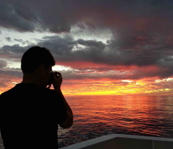 Steve Haddock took a photo of the sunset.