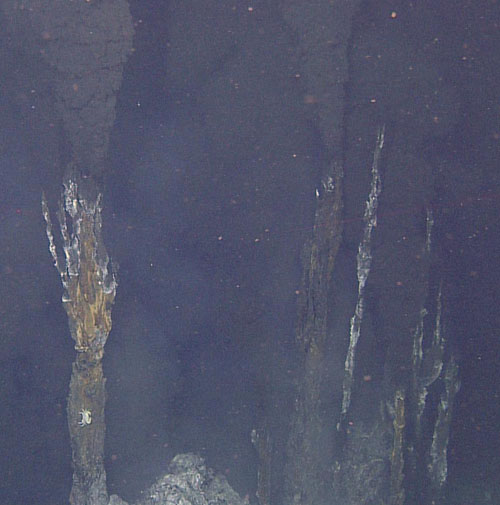 Multiple narrow orifices crowning the top of a hydrothermal vent chimney.