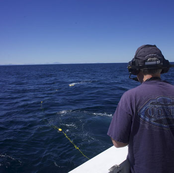 "Dale Graves stands on the back deck using a ""belly pack"", a remote control for the mini ROV. You can see the MiniROV at the surface in the distance and its tether trailing back to the ship."