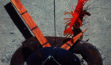 A red shrimp and tiny white amphipods are the first to arrive at the bait, 5100 meters on the seafloor.