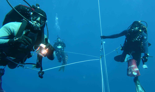 Scientists take advantage of opportunities for blue-water diving to collect important samples.
