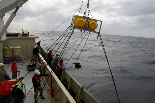 The baited camera system is deployed off the deck of Lone Ranger. The frame with yellow floats houses a video camera, still camera, and data logger that point toward the seafloor. Anchor weights and bait land on the seafloor under the frame and the bait attracts scavengers like fish and crabs.