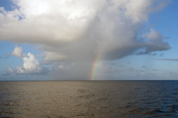 A beautiful rainbow greets Lone Ranger as the sun rises. The science team began the day with a search for Sargassum patches. There were vast areas of empty blue water as the ship surveyed the area around Station #6, but eventually some windrows of the seaweed appeared.
