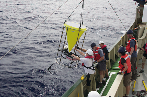 The sediment trap is lifted out of the sea. More floats and a second sediment trap are positioned on the line below. Photo: Debbie Nail Meyer