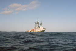 A view of Lone Ranger looking back from a small zodiac. The large swells hide the fantail of the ship.