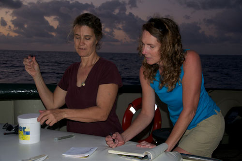 Kathleen Sullivan-Sealey and Debbie Nail Meyer test water quality parameters using a classroom science kit.