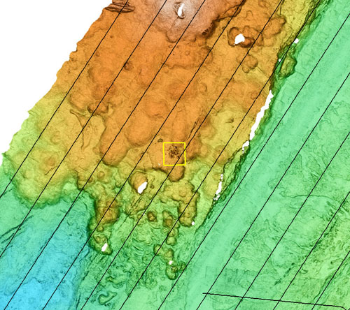 Area of the Alarcon Rise where there is a likely hydrothermal vent field. The black lines running diagonally across the image are the AUV's navigation tracks. The image below is a close-up of the area framed by the yellow square in the image above.