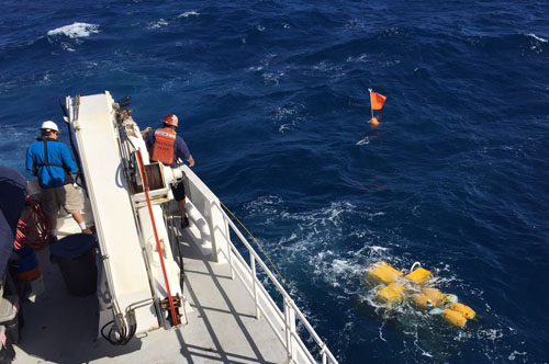 The rover has a 20-meter-long line that is attached to a spar buoy, which makes it easy to find when it comes up to the sea surface. The crew throws a grappling hook to catch the line and then attaches the line to the crane for recovery.