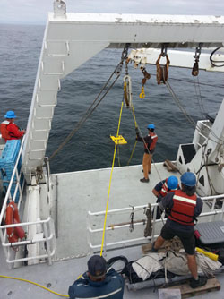The MiniROV was deployed from the well deck on the Western Flyer. The Doc Ricketts ROV pilots and crew all worked with the mini ROV team to make it a successful deployment.
