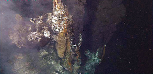 Hydrothermal vent along the Alarcón Rise.