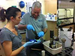 Research Technician Eve Lundsten assists Charlie Paull with core sampling for DDT evidence. Scientists now use DDT as an age marker since it was mainly used during the 1940s and 1950s, but was outlawed in the 1960s.