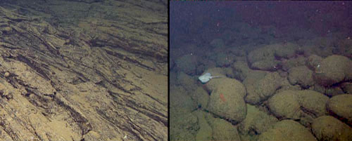 The left shows an example of a sheet flow, and the right frame shows an example of pillow lavas from the Alarcón Rise (with a skate swimming past).