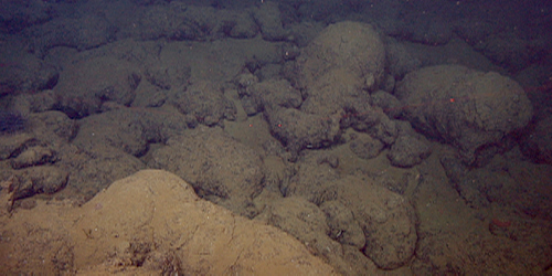 Seafloor composed mainly of lava flows.