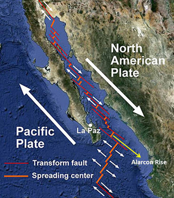 Regional tectonic map showing the direction of movement of the Pacific and North American Plates and the rift system geometry along the axis of the Gulf of California. Note that as new oceanic crust is formed parallel to the spreading centers, the adjoining transform faults accommodate the lateral component of shear parallel to the direction of plate motion.