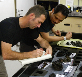 Ronald and Pat Castillo describe rock samples in the lab that we collected on the dive.