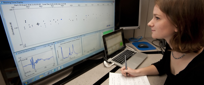 Ellen Jacobs analyzing sonograms of marine mammals.