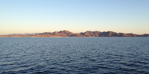 We departed the port of Pichilingue (near La Paz) last night to get a jump on the dive program. It was glassy calm and clear, making for a beautiful transit out the channel.