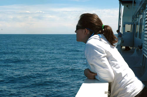 Abbey takes a break from the lab to watch a pod of pilot whales.