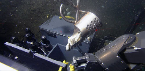 The ROV pilots use this metal scoop (a retrofitted prospector's bucket) to scoop up clams from the muddy seep areas. One manipulator arm is holding the box open while the other manipulator arm pours these large cold seep clams into the sampling box.