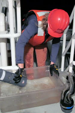 Meghan Powers empties a bounty of zooplankton from the trawl bucket.