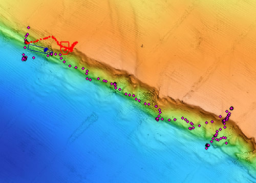 This map shows the high-resolution bathymetry of the seafloor in the area we explored today. A 50-meter-high (164-foot-high) scarp marks the main boundary between the Pacific Plate on the lower left shown in blue shades and the North American Plate on the upper right shown in orange/yellow shades. The image was produced by processing the AUV-collected data with the MB-System program which is maintained at MBARI and brought into ArcMap as a geotiff—an image embedded with spatial referencing information. The ROV's dive track, shown in red and pink dots, is updated in real time in one-minute intervals from ArcMapNav. The R/V Western Flyer's position is in blue. This invaluable real-time tracking tool enables us to explore these dynamic features of the seafloor.