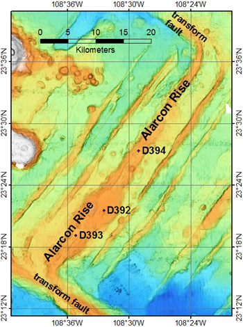 Map of the Alarcon Rise spreading ridge, showing its full extent from the southern to the northern transform faults (through the center of the map from the lower left to upper right). The starting points of our ROV dives on the ridge are the labeled dots. ROV dive D392 was on the inflated bulge of the broadest, most volcanically active part of the ridge and the start depth for the dive was 2,297 meters (7,536 feet). The start depth for D393 was 2,379 meters (7,805 feet), and D394 was 2,373 meters (7,785 feet). Bathymetry data after Castillo et al. (2002).
