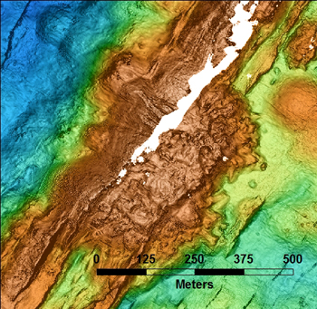 The dome in the center of the MBARI AUV bathymetry map was explored and sampled today. It appears to be composed of more viscous lava than the low, rounded pillow mounds and flatter sheet flows that surround it. Narrow, steep ridges extend to the northeast and southwest, and may be related. In the coming weeks we will be editing the noise in the AUV data, which we only received Monday. The white space is where there is no data. The blue colors are deep, starting at about 2,500 meters (8,200 feet), and oranges are shallow, to 2,345 meters (7,700 feet).