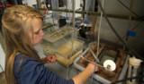 summer intern working in the wetlab