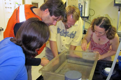 Rebeca Gasca, Steve Haddock, Erik Thuesen, and Karen Osborn are eagerly waiting in the lab to sort through the trawl.