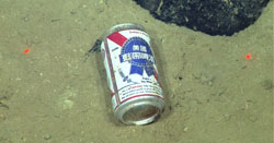 beer can on seafloor