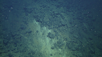 Talus slope of volcaniclastic and pillow lava debris on the flank of a 100 meter tall flat-topped cone at the end of the dive.