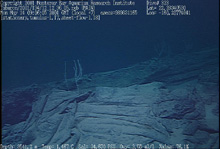 Folded, ropy sheet flow, upended to become a tumulus off Ni'ihau Image © 2001 MBARI