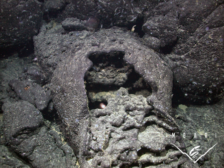 Seafloor lava flow