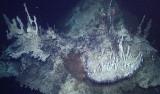 delicate carbonate spires