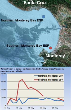 Map showing locations of two ESPs used to measure domoic acid in Monterey Bay