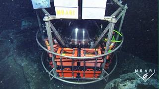 The Deep Environmental Sample Processor (Deep-ESP)