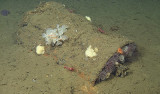 This still image from video captured by MBARI's ROV Doc Ricketts shows one of many 55-gallon drums that were lying on the seafloor in the area marked as a chemical munitions dump. Image: (c) 2013 MBARI