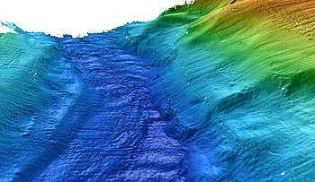 This three-dimensional view of the Monterey Canyon channel was made from multibeam bathymetry data collected with the mapping AUV. Ripples and erosion channels are visible in the canyon axis. David Caress © 2005 MBARI
