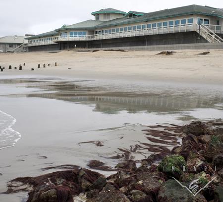 MBARI at low tide