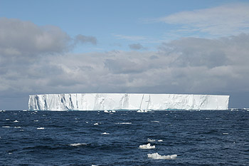 Iceberg W-86 in the Weddel Sea. Researchers found zones of abundant marine life around such floating icebergs.