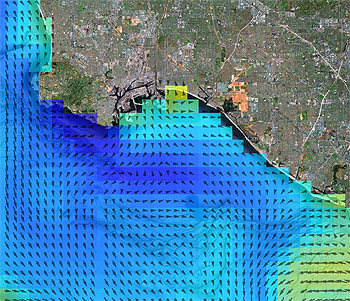 This image shows a forecast of the temperature of surface waters (blue and yellow shading) and currents (black arrows) made by the Regional Ocean Modeling System (ROMS) computer model during the ECOHAB experiment. Similar models may eventually be able to forecast the locations of harmful algal blooms. Base image: Google Maps