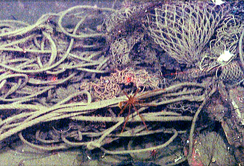 A tangle of rope and fishing gear lies on the seafloor about 1,000 meters (3,280 feet) deep in Monterey Canyon. Image: ©2012 MBARI