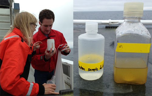 Left: Lynne and Alex look at the results of their plankton tow. Right: The bottle on the left contains the water from the bucket. The bottle on the right contains the concentrated plankton from the tow. The concentrated plankton is brown and contains many plankton surface dwellers, big and small.