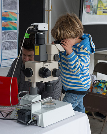 Kids and microscopes