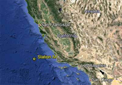 Station M is a long-term study site on the abyssal plain, about 220 kilometers (140 miles) off the Central California coast and 4,000 meters (13,100) feet below the ocean surface. Base image: Google Earth